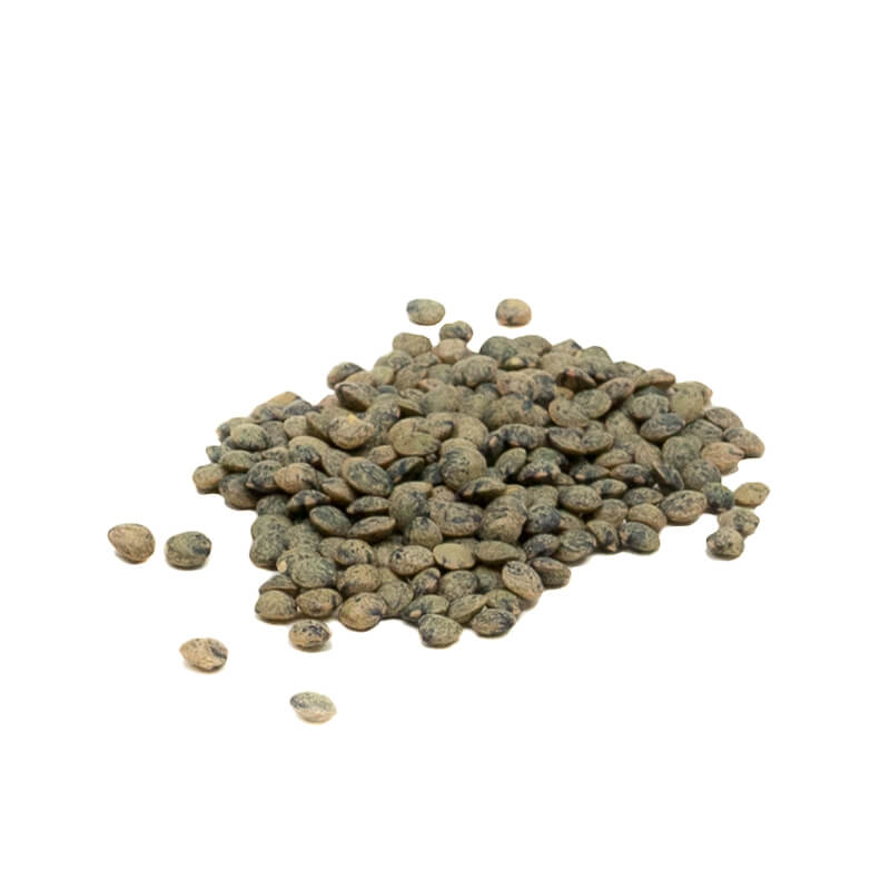 Green Lentils, french type